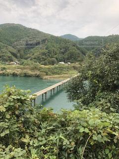 四万十川 沈下橋の写真・画像素材[1081831]