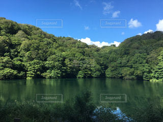 自然の写真・画像素材[603685]