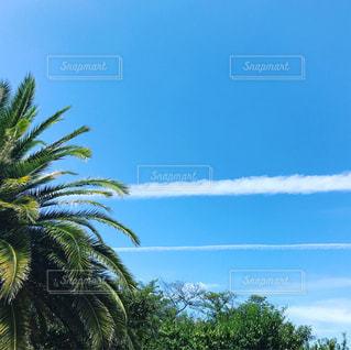 青空に広がるまっすぐ伸びる白い雲の写真・画像素材[764179]