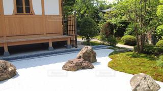 中庭、綺麗の写真・画像素材[603243]
