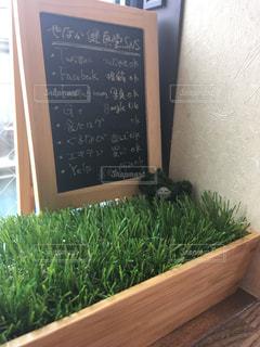 カフェのメニュー表 - No.732440