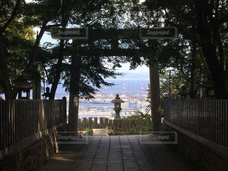 保久良神社から見下ろす海の風景の写真・画像素材[1396655]