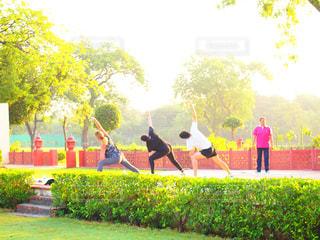 インドでヨガ!の写真・画像素材[749169]