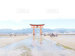 厳島神社の鳥居の写真・画像素材[750850]