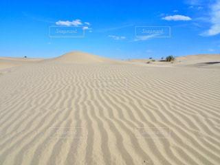砂漠の写真・画像素材[752535]