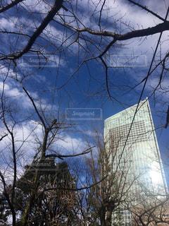 空の写真・画像素材[603712]