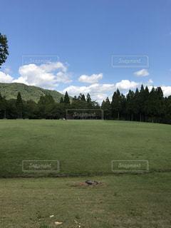 背景の木と大規模なグリーン フィールド - No.727755