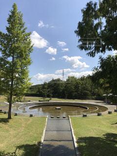 公園を流れる川 - No.727800