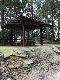 背景の木と家 - No.735845