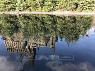 木々に囲まれた水域の写真・画像素材[2453605]