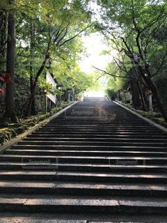 京都のお寺の写真・画像素材[2475768]