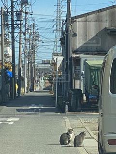 道路の脇に停車しているバスの写真・画像素材[2883635]