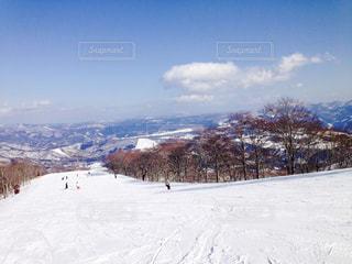 雪 - No.603977