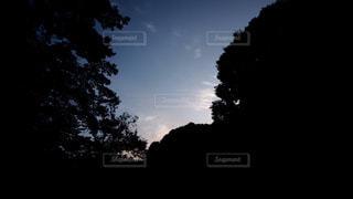 屋外の写真・画像素材[645358]