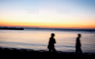 城南島海浜公園の写真・画像素材[943279]