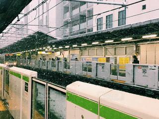東京の雪の写真・画像素材[977064]