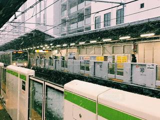 東京の雪の写真・画像素材[977065]