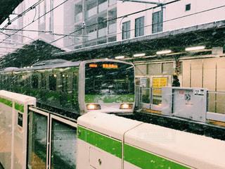 東京の雪の写真・画像素材[977066]