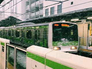 東京の雪の写真・画像素材[977067]