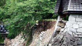 熊本城 熊本地震の写真・画像素材[1052278]