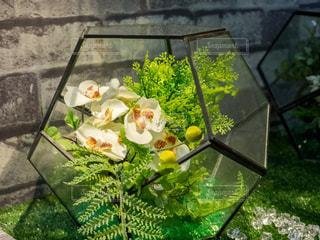 テーブルの上の花の花瓶 インテリアの写真・画像素材[1068980]