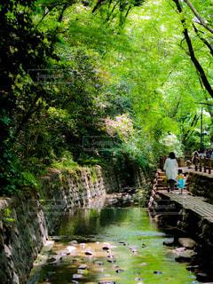 川の横に立っている人々 のグループの写真・画像素材[1172436]