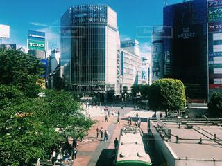 都市の高層ビル 渋谷 スクランブルの写真・画像素材[1283516]