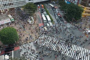 渋谷駅前のスクランブル交差点の写真・画像素材[1462271]