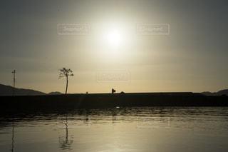 陸前高田の奇跡の一本松の写真・画像素材[1498739]