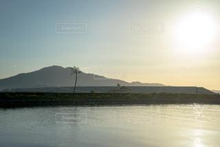 陸前高田の奇跡の一本松の写真・画像素材[1498741]
