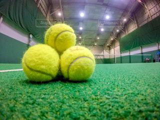 グリーン ボール品川プリンスのテニスボールの写真・画像素材[1565111]