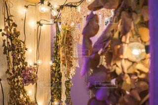 紫色の花一杯の花瓶ドライフラワーのある部屋の写真・画像素材[1565121]