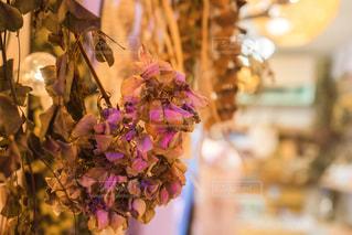 近くの花のアップドライフラワーのある部屋の写真・画像素材[1565125]