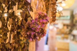 近くの花のアップドライフラワーのある部屋の写真・画像素材[1565126]