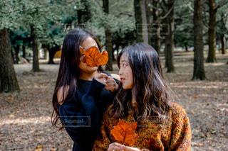 森の中で落ち葉を持っている二人の女性の写真・画像素材[1594944]