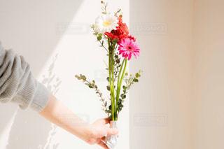 花束を持つ女性の写真・画像素材[2097789]