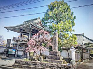 神社@大分県・日田市の写真・画像素材[1084652]