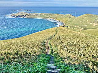 スコトン岬の写真・画像素材[1084797]