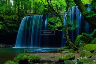 自然の写真・画像素材[605684]