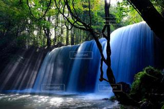 森の中の大きな滝の写真・画像素材[758581]