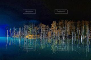 夜の青い池の写真・画像素材[1632856]