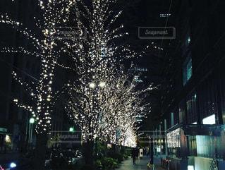 夜の街の写真・画像素材[1716403]