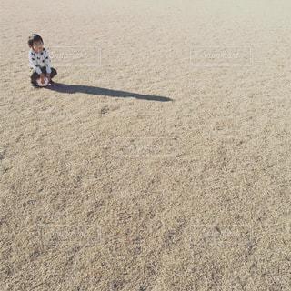 ボールに座った子供の写真・画像素材[1805658]