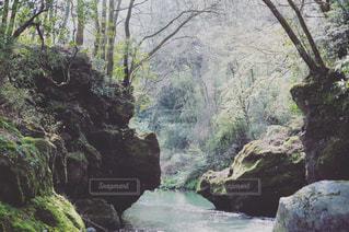 水の写真・画像素材[606310]