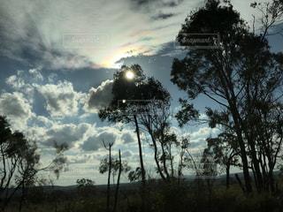 自然の写真・画像素材[607153]