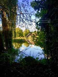 絵画 建築 池 緑 額縁 癒し 緑 景色 穏やか 生活 ヨーロッパ オランダ アムステルダムの写真・画像素材[612295]