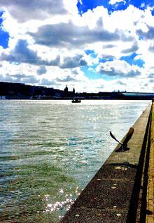運河 船 青空 鳥 美しい 景色 愛 ヨーロッパ オランダ アムステルダム 旅行 散策の写真・画像素材[612317]