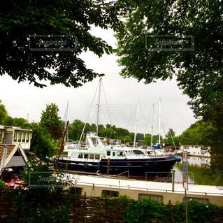 ヨット ハーバー 緑 青空 青 景色 ヨーロッパ オランダ アムステルダムの写真・画像素材[612344]