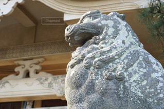 神社の写真・画像素材[608477]