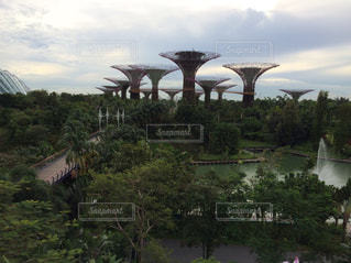 シンガポール - No.608988